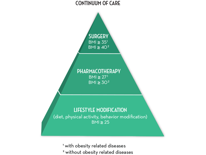 continuum of care weight loss pyramid